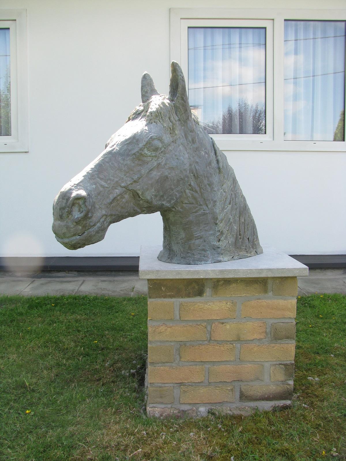 paardenkop paardenhoofd creatie 2