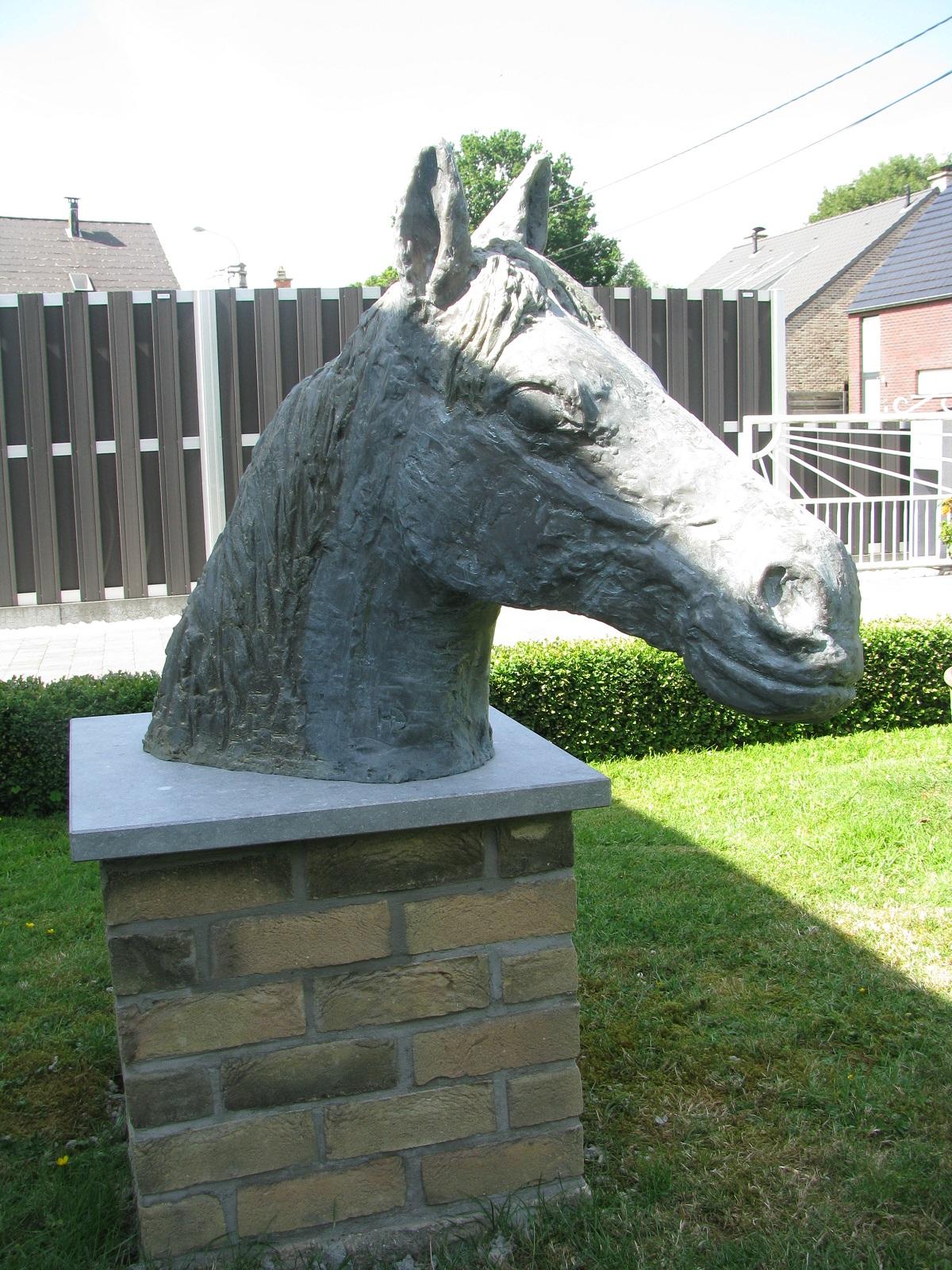 paardenkop paardenhoofd creatie 3