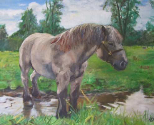Schilderij op aanvraag: paard